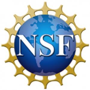 http://www.seaviewdata.org/wp-content/uploads/2016/11/nsf_logo-300x300.png